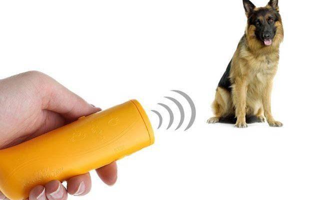 Лучшие отпугиватели собак