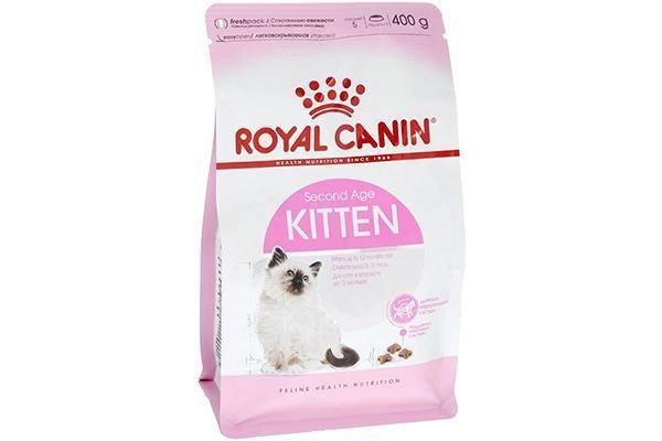 royal canin для котят