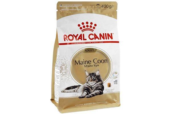 Royal Canin Мейн-кун