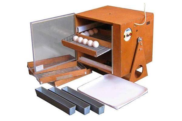 Цифровые модели инкубаторов для птиц. Что лучше выбрать?