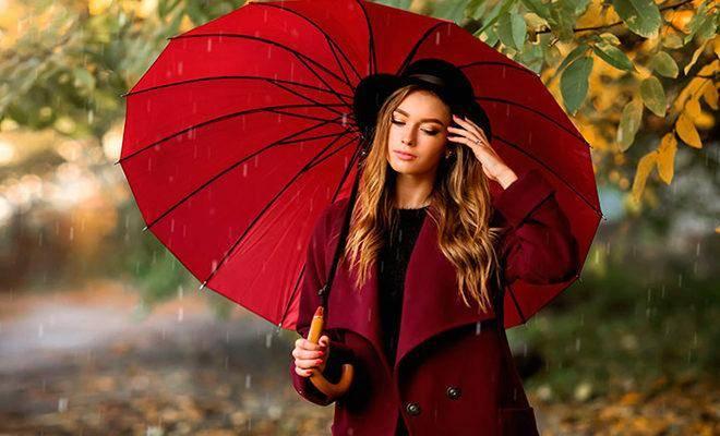 Лучшие зонты трости