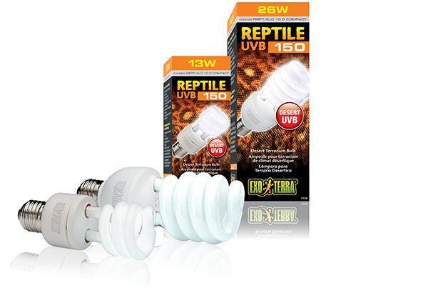 Exo Terra Reptile UVB100 (Repti Glo 5.0) Compact T10