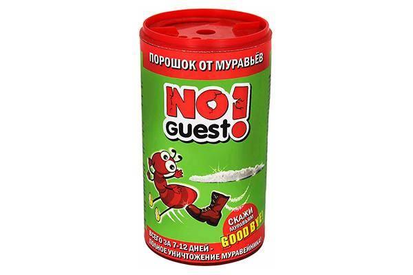 No Guest!
