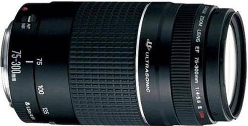 Canon EF 75-300mm f/4-5.6 III USM