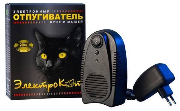 Electro Cat