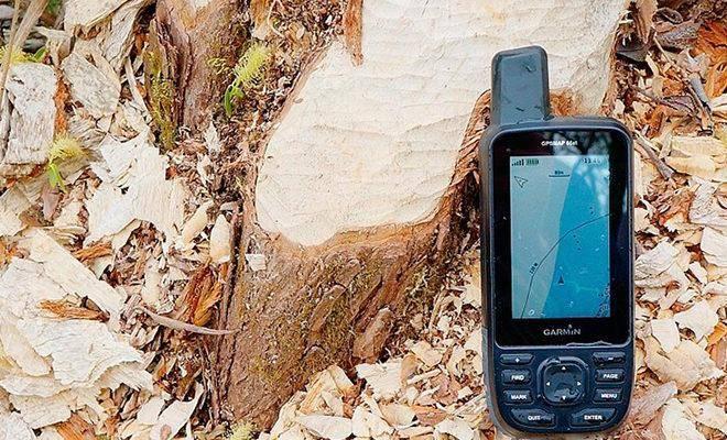Лучшие навигаторы для леса