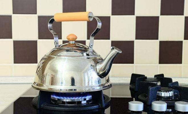 Лучшие чайники для газовой плиты