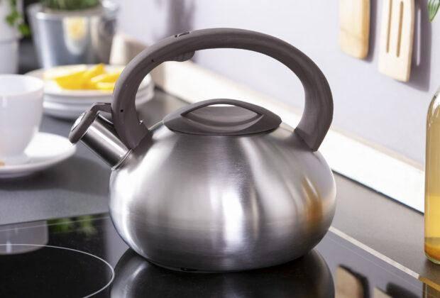 лучшие чайники со свистком