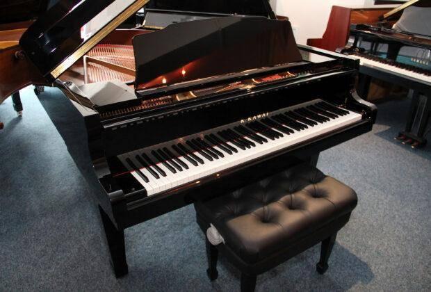 лучшие производители роялей