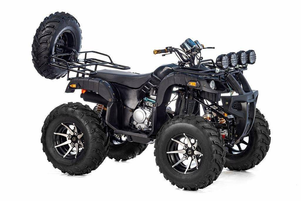 Grizzly 300cc