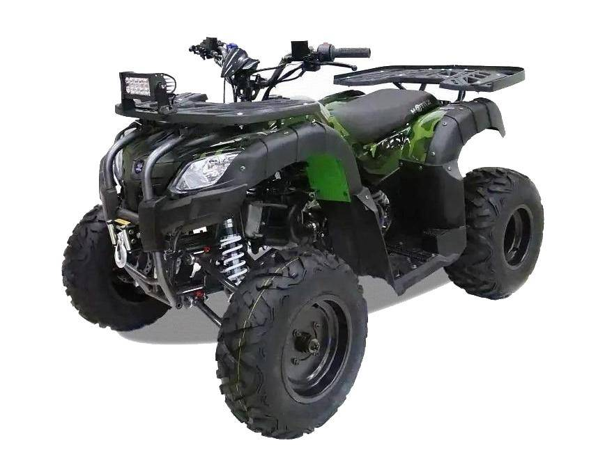 Motax ATV Grizlik 200