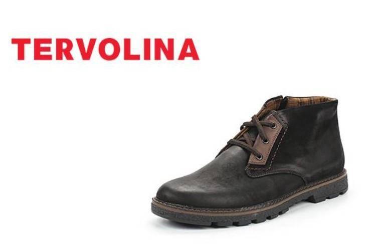 Tervolina